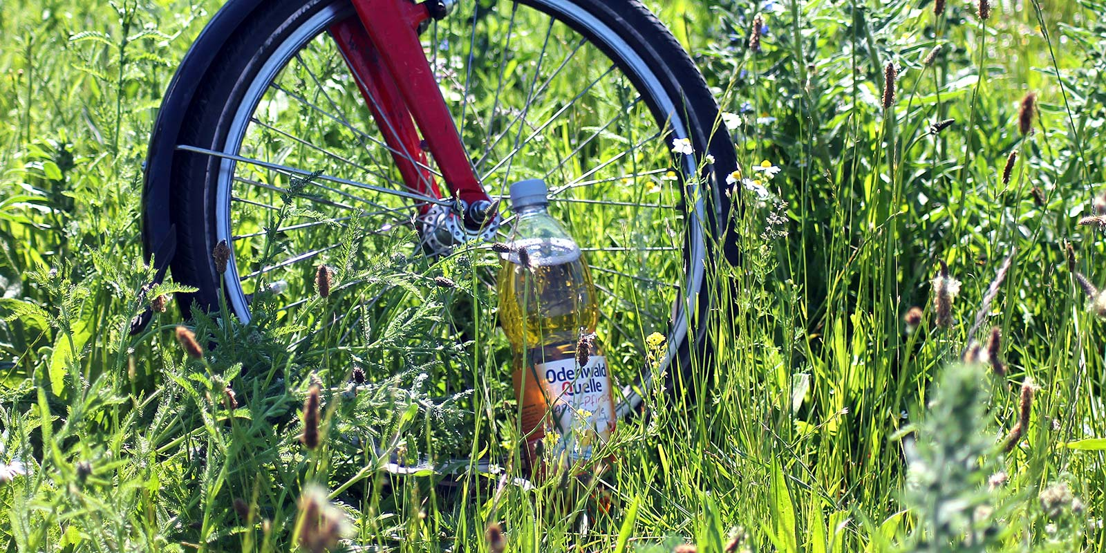 Fahrrad mit Odenwald Quelle Apfel-Pfirsisch-Schorle Flasche